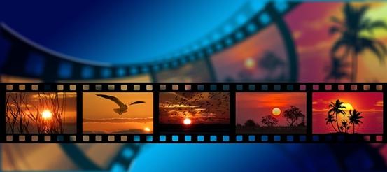 2019年度电影市场报告:90后贡献全年55%的票房收入 成主力军