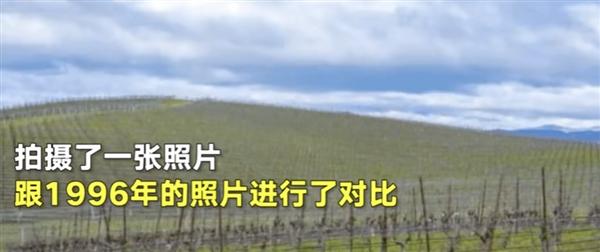 WindowsXP那张蓝天白云壁纸 现已变成大片葡萄棚