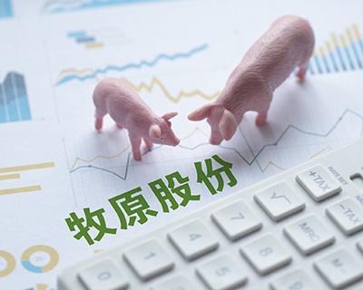 牧原股份股东大会直击:猪价下行会否影响扩张? 猪价仍是绕不开的话题
