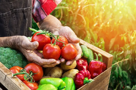 """""""有机食品""""更有营养?如何挑选有机食品呢?"""
