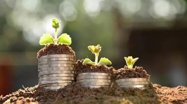 小微续贷差异化监管、贷款风险分类制度加速完善 降低企业综合融资成本