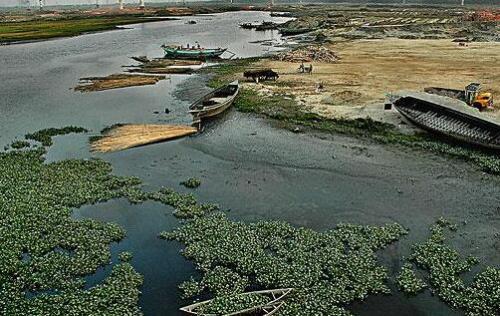 着力抓好农业源生活源水污染治理 从源头上控制新污染源产生