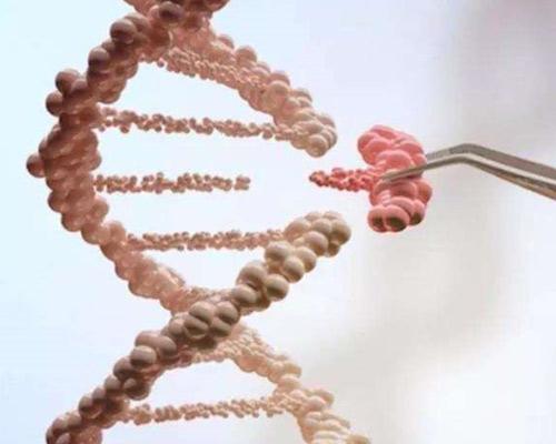 基因组学研究迎来新突破!大豆图形结构泛基因组图谱绘成
