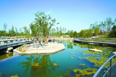 朝阳农村:五年增绿1600万平方米 96个精品公园连绿成廊